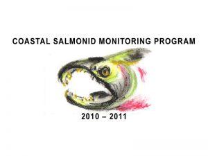 salmon carcass CAP 2