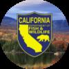 dfw logo scenery